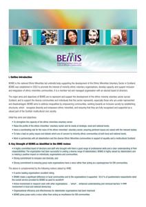 what-is-bemis